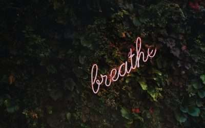 Slow Down – Empower Blog